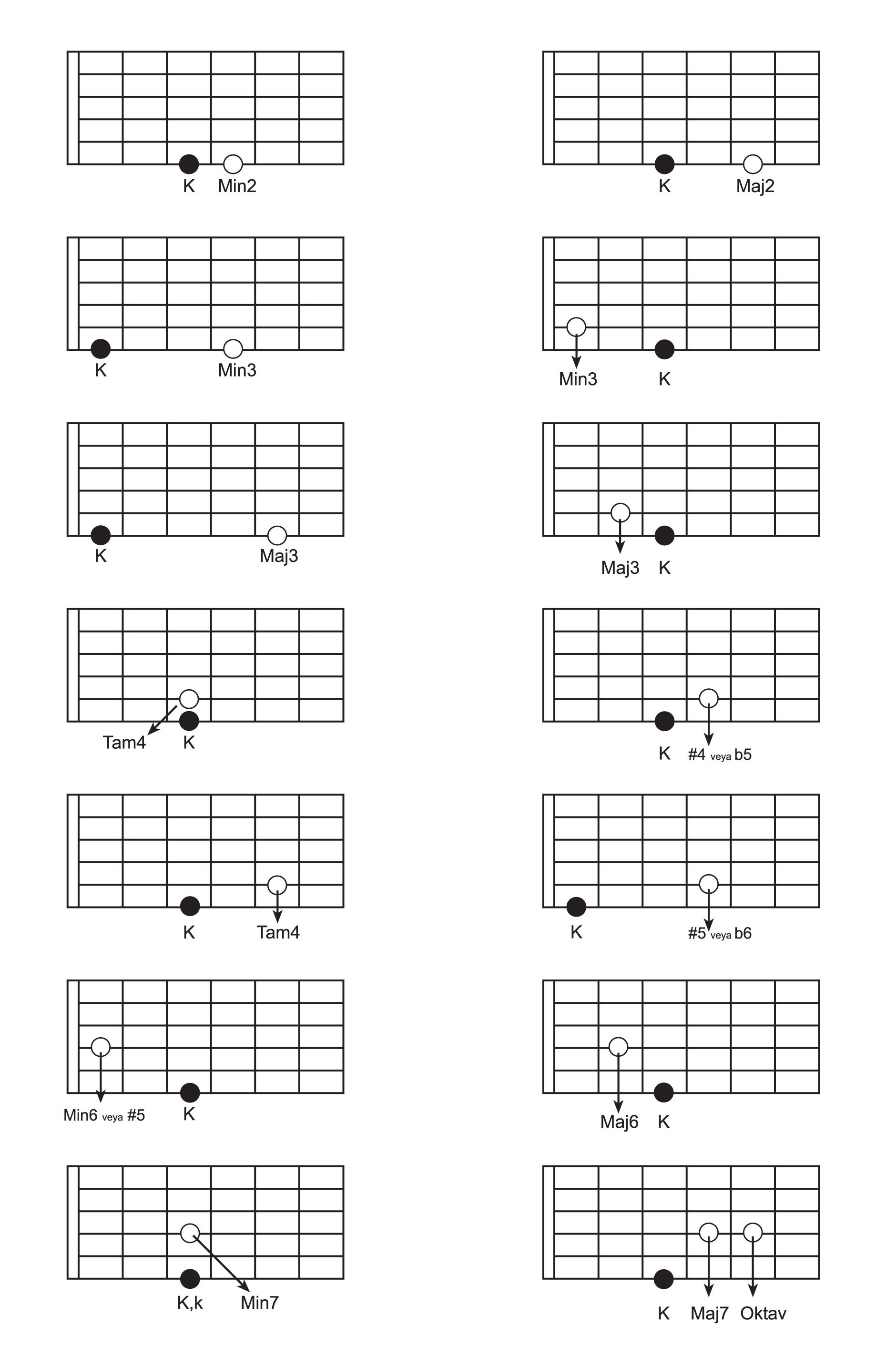 gitaruzerindearaliklar